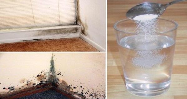 vous n 39 arrivez pas vous d barrasser de la moisissure chez vous voici une formule qui vous. Black Bedroom Furniture Sets. Home Design Ideas