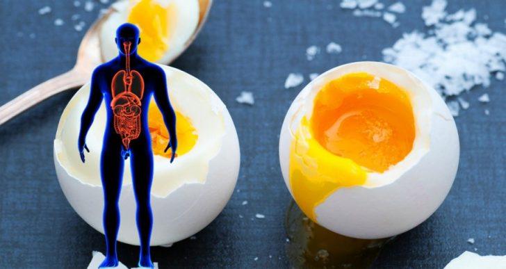 Qu'est-ce qui se passe quand vous mangez 3 œufs chaque