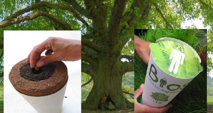 vivre ternellement l urne fun raire qui fera de vous un arbre apr s votre d c s. Black Bedroom Furniture Sets. Home Design Ideas