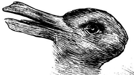 qu-est-ce-que-vous-voyez-en-premier-un-lapin-ou-un-canard