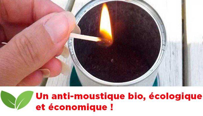 Une astuce écologique et économique : Voici un anti-moustique bio…Vous n'allez pas le croire !