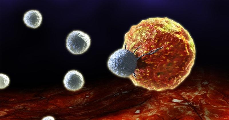 les 6 alimentsanti-angiogéniques : Voici comment asphyxier les cellules cancéreuses naturellement …