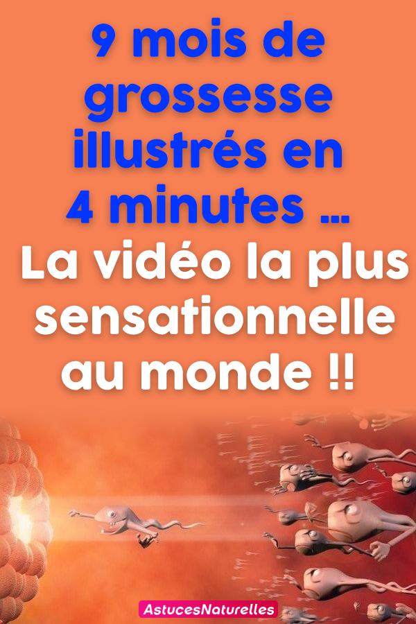 9 mois de grossesse illustrés en 4 minutes … La vidéo la plus sensationnelle au monde !!