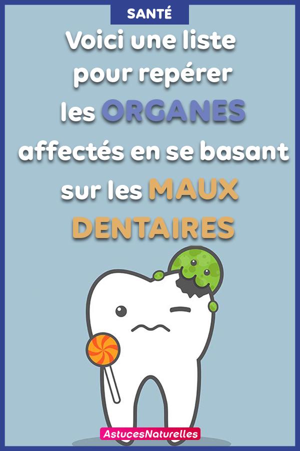 Chaque dent est associée à un organe dans votre corps ! Voici ce que chaque douleur aux dents indique sur la santé de vos organes …