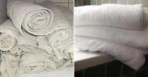 un-truc-efficace-pour-rendre-les-serviettes-de-toilette-comme-neuves-500x262-500x262