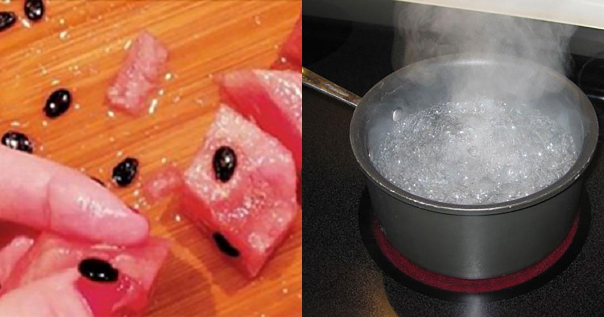 Retirez des graines de pastèque et faites-les bouillir dans de l'eau … Les résultats vous épateront !