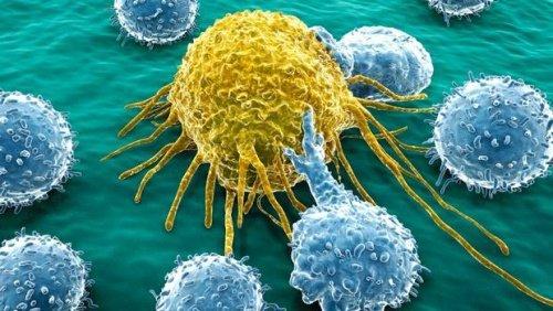cellule-de-cancer-1-500x282-500x282