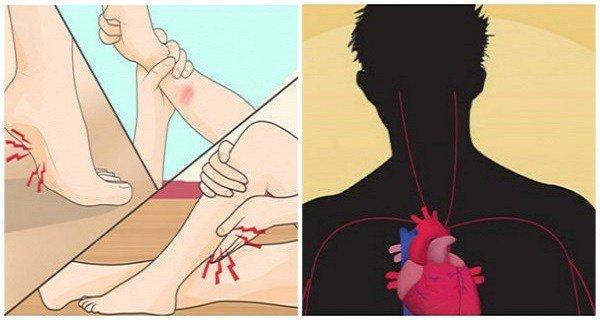 les-premiers-signes-que-le-niveau-de-magnesium-dans-votre-corps-est-dangereusement-faible