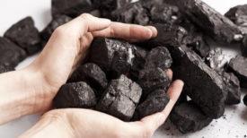 5-utilisations-fascinantes-du-charbon-de-maison