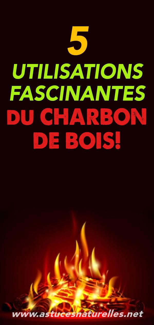 5 utilisations fascinantes du CHARBON DE BOIS!