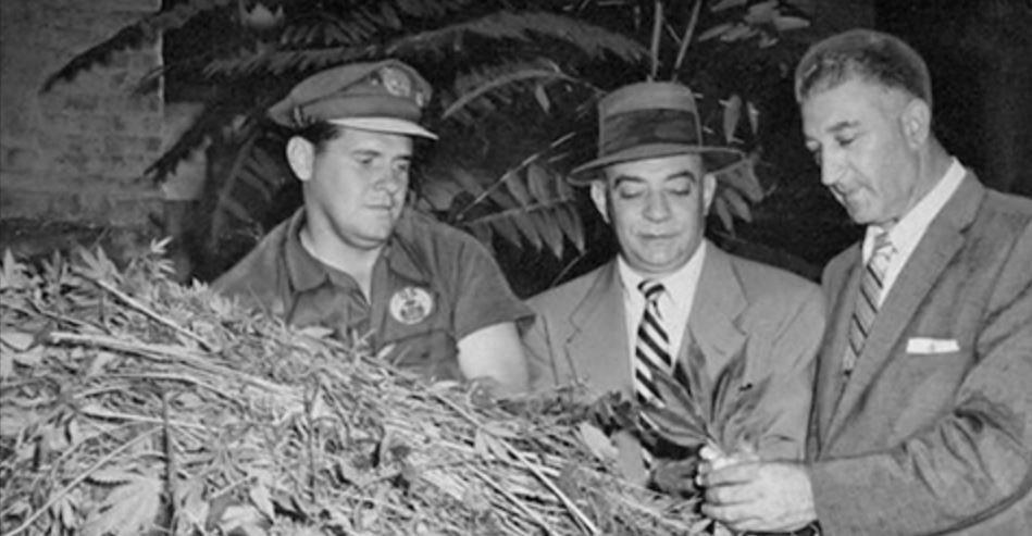 raisons-interdiction-cannabis
