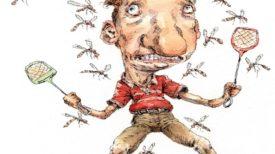 5 raisons pour lesquelles les moustiques sont plus attirés par vous !