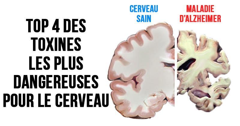 toxines-cerveau