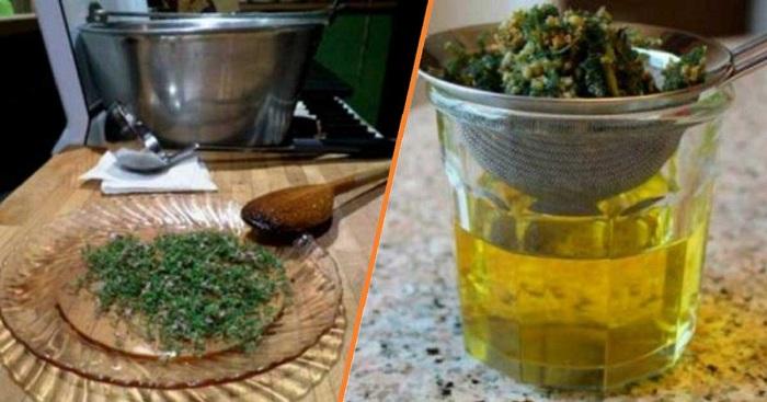 Combattre le lupus, le vertige, l'arthrite, la fibromyalgie, les problèmes de thyroïde, la fatigue chronique et plus encore grâce à cette plante naturelle.