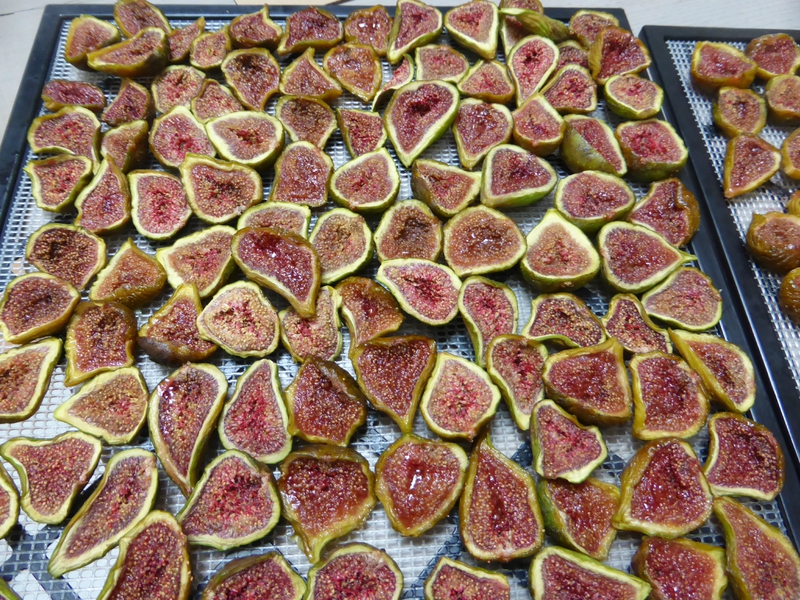 figues-seches