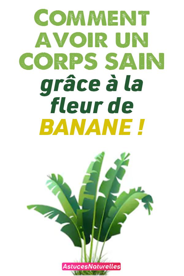 Comment avoir un CORPS SAIN grâce à la fleur de banane !