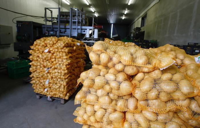 70 employés dans usine de pomme de terre belge ont tous souffert d'une infection mystérieuse.