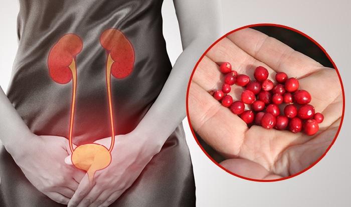 Si vous avez une infection urinaire, commencez à consommer ces aliments !