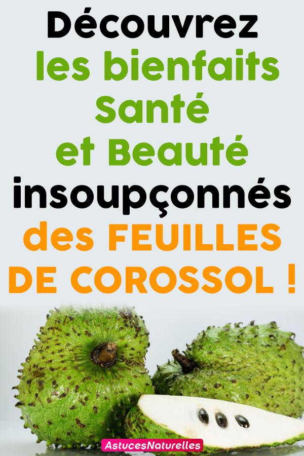 Découvrez les bienfaits Santé et Beauté insoupçonnés des FEUILLES DE COROSSOL!