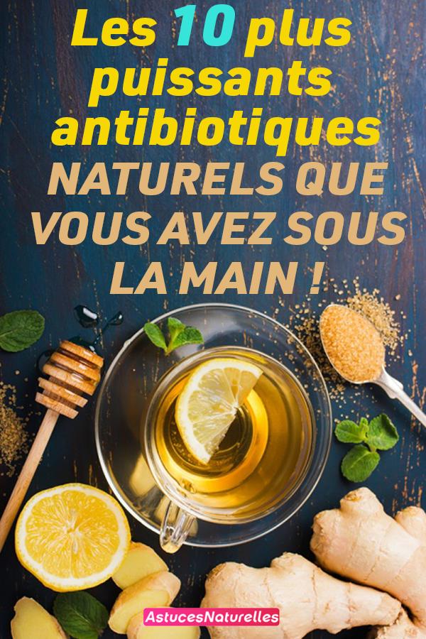 Les 10 plus puissants antibiotiques naturels que vous avez sous la main !