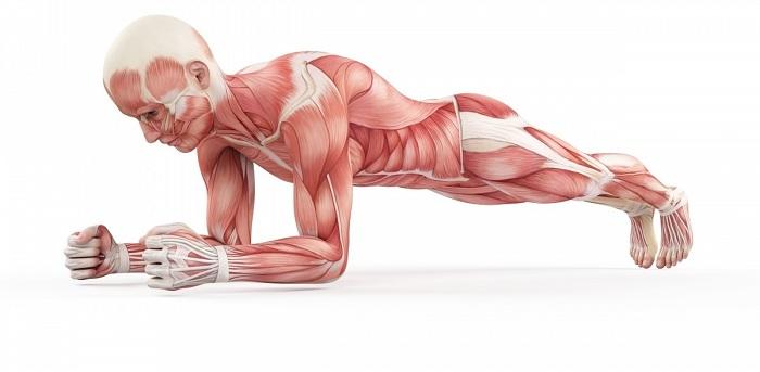10 erreurs d'entraînement qui peuvent être dangereuses pour votre santé !