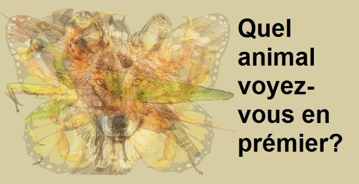 Psychologie : le premier animal que vous voyez dans cette illustration révèle beaucoup sur votre personnalité.