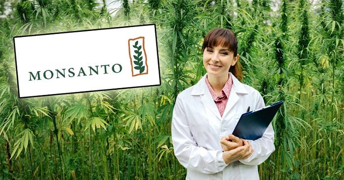 Prise de contrôle du cannabis par Bayer et Monsanto? Voici ce que vous devez savoir ...