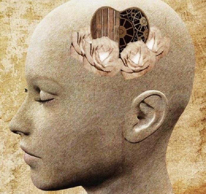 La transmission émotionnelle, soit la capacité à entendre ce qui n'est pas dit !