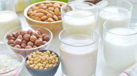 Les professionnels de la santé rapportent que les laits en provenance de plantes ne devraient pas être la boisson principale pour les enfants de bas âge.