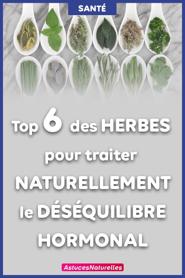 Top 6 des herbes pour équilibrer vos hormones naturellement.
