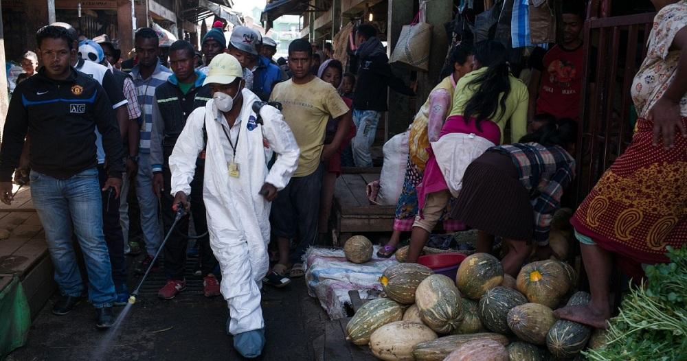 Comment Madagascar est parvenu à garder sous contrôle son épidémie de peste !