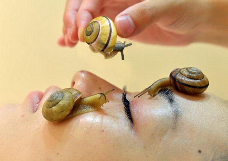 La bave d'escargot pour mieux hydrater la peau !