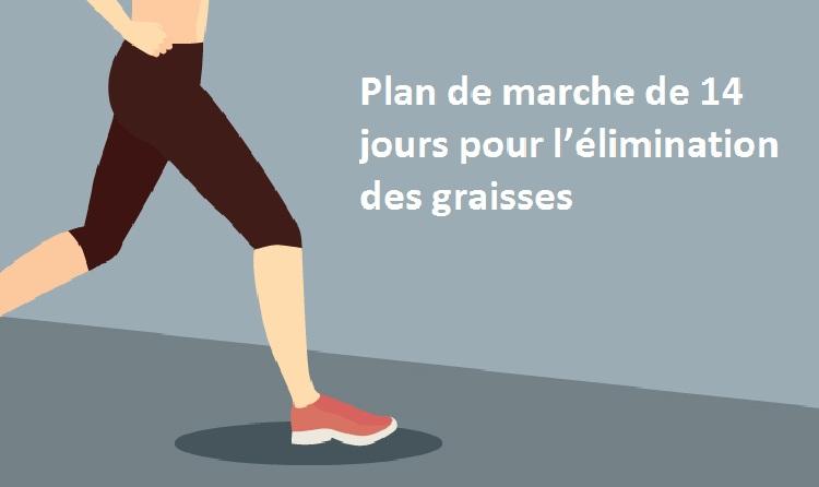 Un plan de marche de 14 jours pour l'élimination des graisses encombrantes !