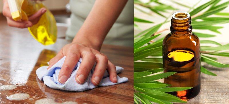Préparer un puissant désinfectant naturel avec l'huile essentielle d'arbre à thé et de la citronnelle