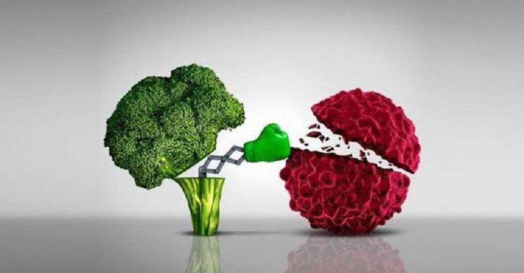 Le modèle métabolique du cancer: comment la nutrition et l'alimentation influencent le cancer !
