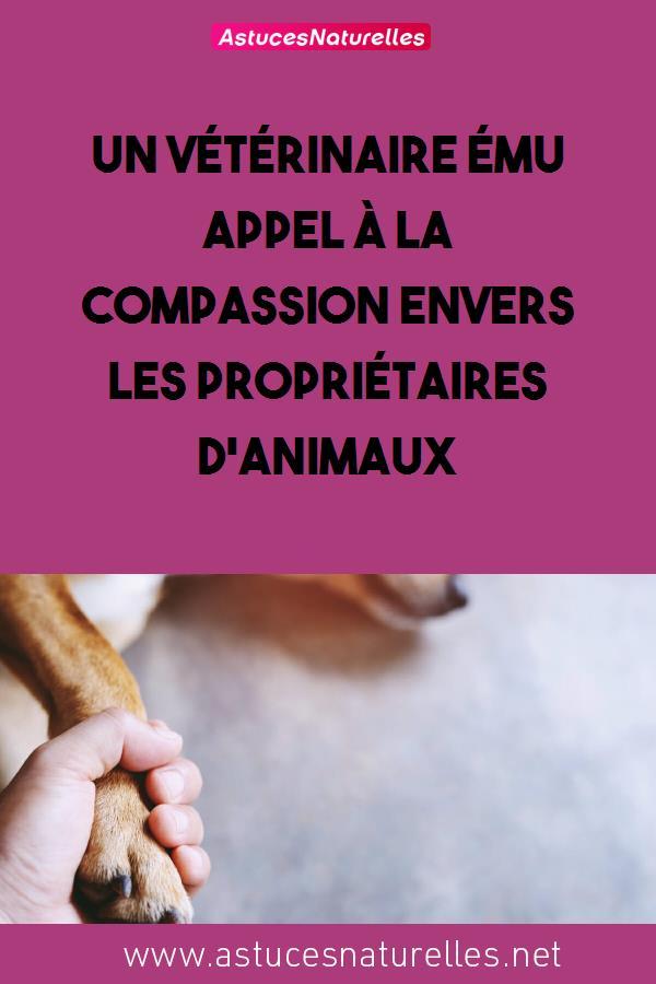 Un vétérinaire ému appel à la compassion envers les propriétaires d'animaux
