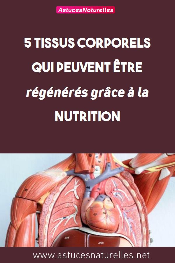 5 tissus corporels qui peuvent être régénérés grâce à la nutrition