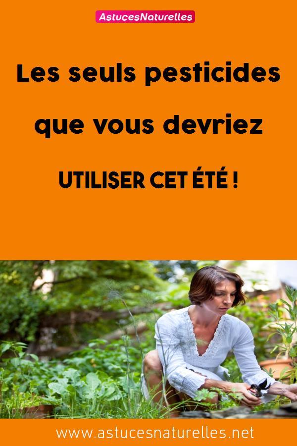 Les seuls pesticides que vous devriez utiliser cet été !