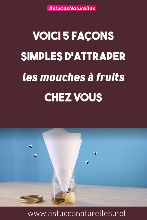 Voici 5 façons simples d'attraper les mouches à fruits chez vous