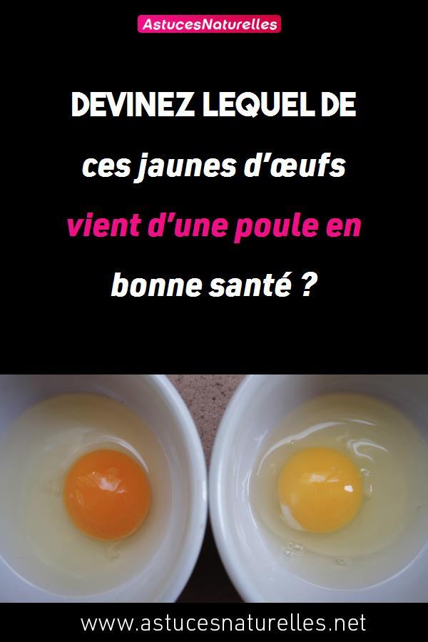Devinez lequel de ces jaunes d'œufs vient d'une poule en bonne santé ?
