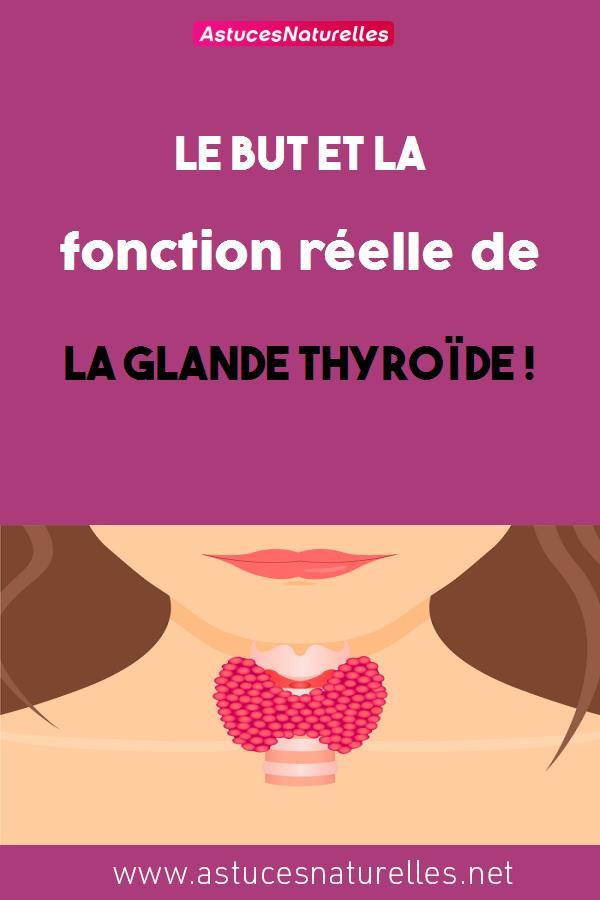 Le but et la fonction réelle de la glande thyroïde !