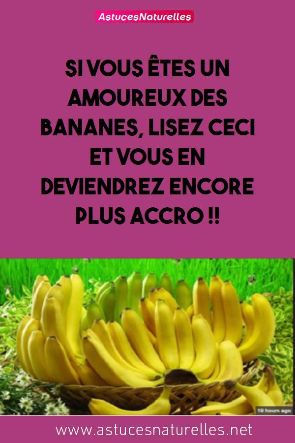 Si vous êtes un Amoureux des Bananes, Lisez CECI et vous en deviendrez encore plus accro !!