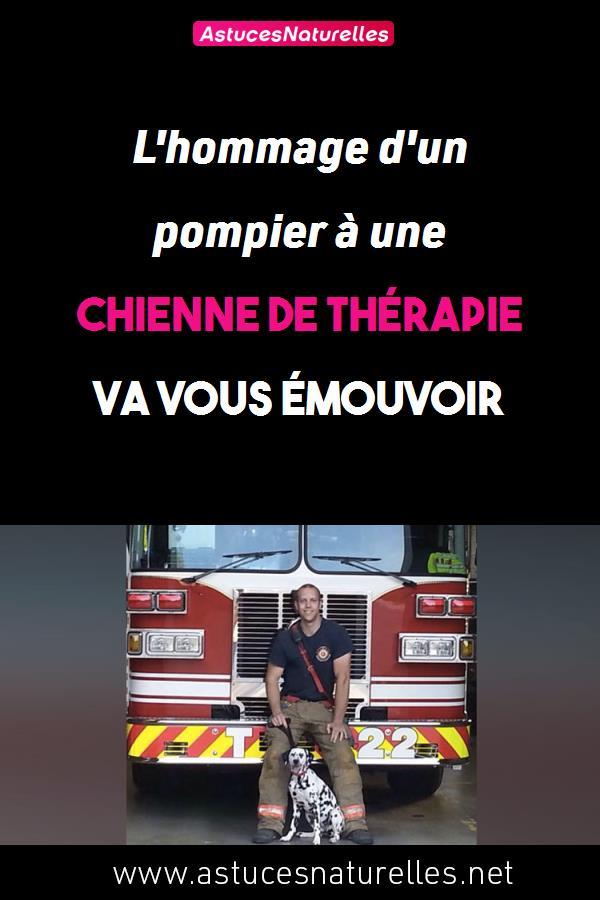 L'hommage d'un pompier à une chienne de thérapie va vous émouvoir