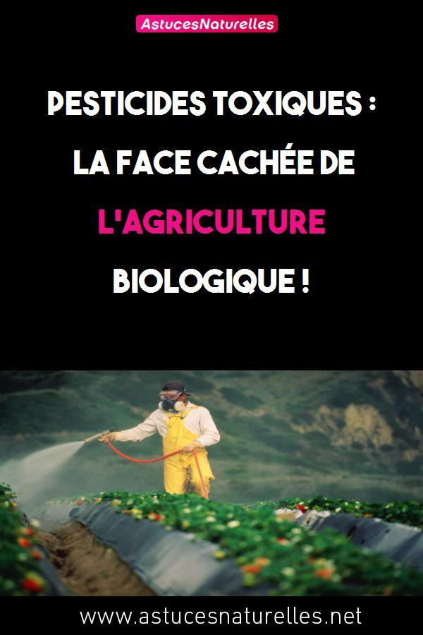 Pesticides toxiques : la face cachée de l'agriculture biologique !