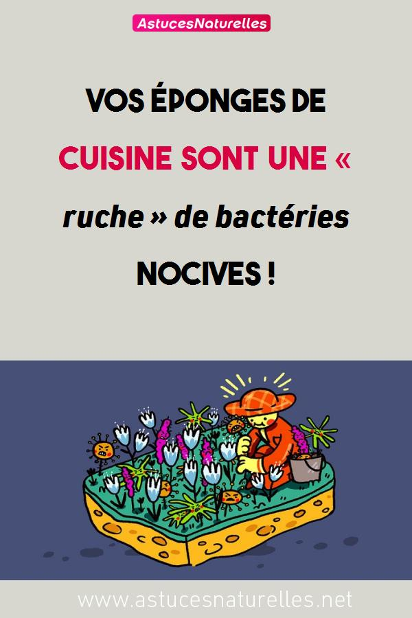Vos éponges de cuisine sont une « ruche » de  bactéries nocives !