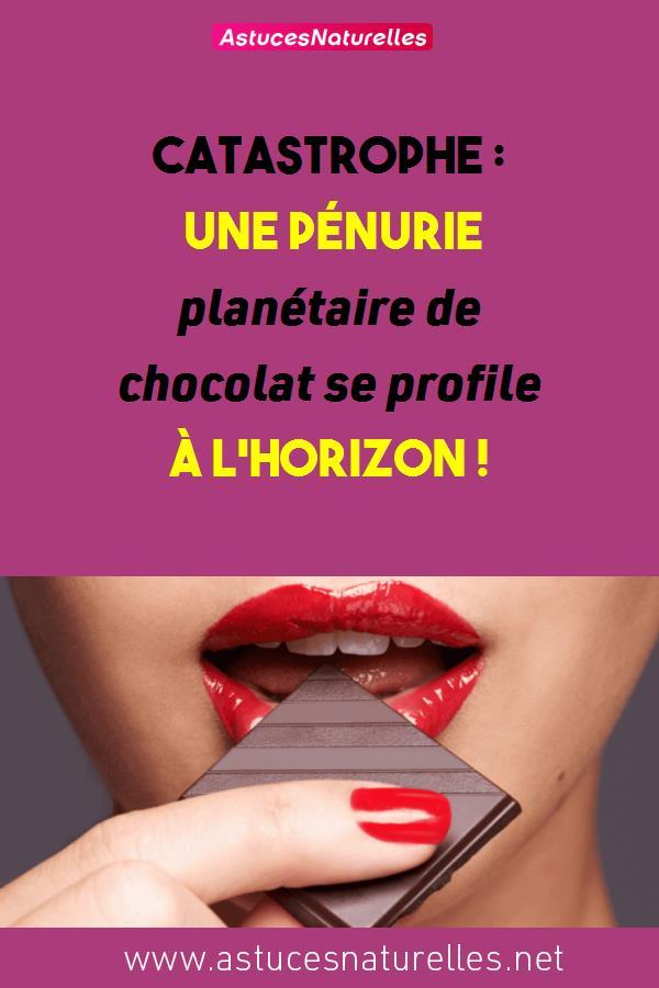Catastrophe : Une pénurie planétaire de chocolat se profile à l'horizon !