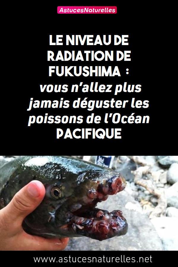 Le niveau de radiation de Fukushima : vous n'allez plus jamais déguster les poissons de l'Océan Pacifique