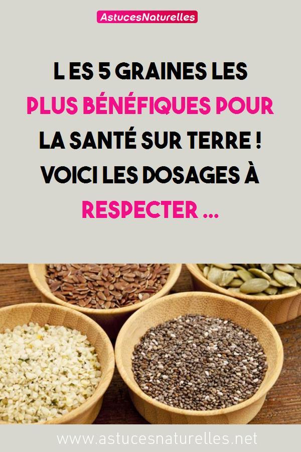 L es 5 graines les plus bénéfiques pour la santé sur terre ! Voici les dosages à respecter …