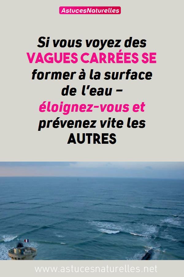 Si vous voyez des vagues carrées se former à la surface de l'eau – éloignez-vous et prévenez vite les autres