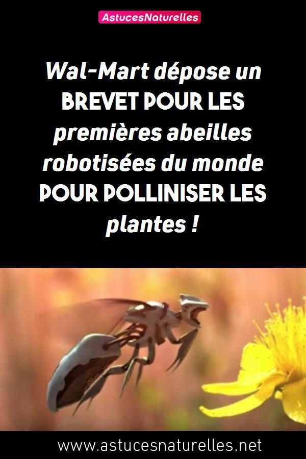 Wal-Mart dépose un brevet pour les premières abeilles robotisées du monde pour polliniser les plantes !